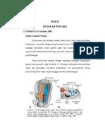 Embriologi Sistem Genitalis Wanita