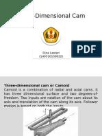 Three-Dimensional Camoid