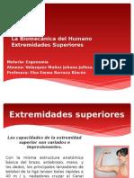 Capitulo 7- Biomecanica Del Humano Extremidades Superiores