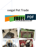 grades 6-9 illegal pet trade presentation final version