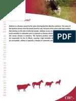 ANTHRAX-EN.pdf