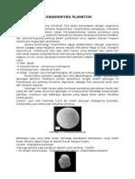 Foraminifera Planktonik