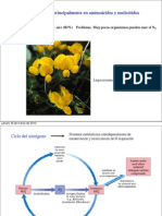 PDF D.Segura Sintesis AA