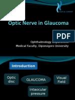 Optic Nerve in Glaucoma (Manado 2011)