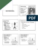 bacteriofagi