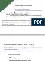 PDF D.Segura Degradación AcGrasos
