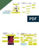 Clasificación Química de los minerales.docx