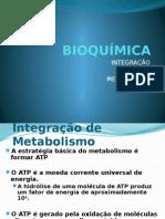Aula Integração Metabolismo