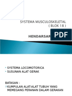 Blok Sist Musc Skeletal