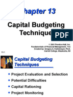 Capital Budgeting Techniques(v)