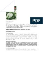 Vademecum Colombiano de Plantas Medicinales