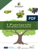 Alberi Patrarchi