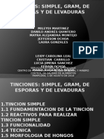 Informe Tincion Simple y Diferencial Pamplona