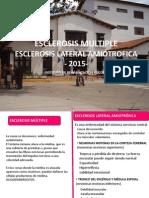 ELA Y EM.pdf