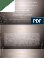 Análisis Nutricional y Producción de Alimentos Balanceados