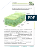 43_folha netexplica