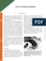 Anatomía de La membrana peritoneal