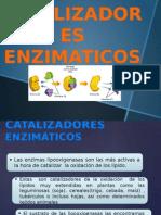 Catalizadores enzimáticos
