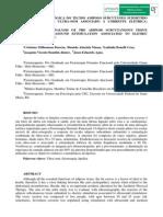 Grasa Localizada Ultrasonido y Estimulacion Eléctrica BR