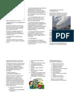 Qué Es La Contaminación Ambienta1