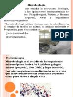 Historia y Micro 2015