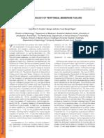 Fisiopatologia de La Falla de Mp