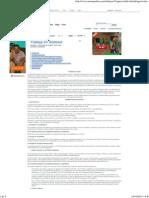 Agresividad Infantil - Monografias.com