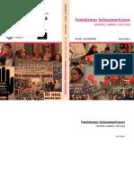 Chejter, Silvia - Feminismos Latinoamericanos. Tensiones, Cambios y Rupturas