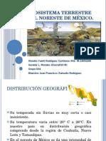 Ecosistema Terrestre del Noreste de México.pptx