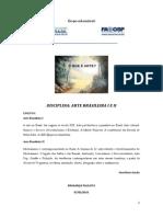 1 - Apostila - Ensino Da Arte No Brasil (1)