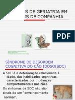 Estudos de Geriatria Em Animais de Companhia Maria Leonora Veras de Mello