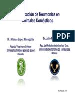 3-classificacion-neumonias