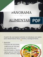 Panorama Alimentario