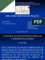 areas del servicio policial.ppt
