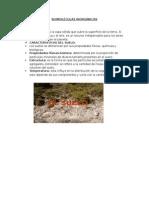 BIOMOLÉCULAS INORGÁNICAS.docx
