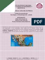 caracteristicas-culturales (1).pptx