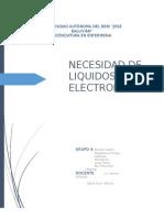 Necesidad de Liquidos y Electrolitos - 8-10-15 Informe Hugo