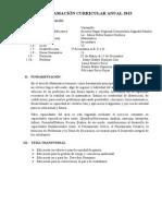 Programa. Anual Matematica SF 2013 JENNY (S).docx