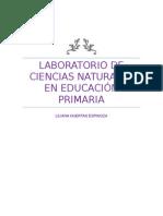 LABORATORIO DE CIENCIAS EN EDUCACIÓN PRIMARIA.docx