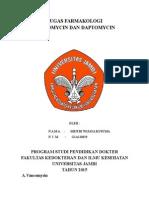 Vancomysin Dan Daptomycin- Meitri Wijaya Kusuma G1A113019-3