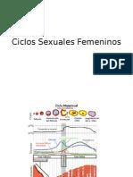 Ciclos Sexuales Femeninos