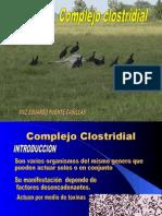 CLOSTRIDIASISPeru2