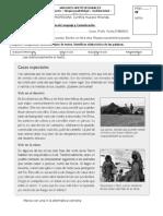prueba texto inform. 3° 2015