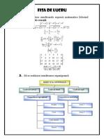 Fisa organigrama_ecuatii