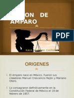 Accion de Amaparo