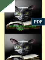 El Gato Vidente