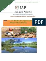 Estudio-de-Impacto-Ambiental-principios-y-procedimientos                f.docx