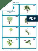 SupEFL Flashcards Nature