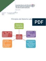 Principios Del Derecho Laboral Derecho 3