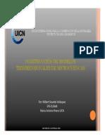 Anexo 10 Elaboracion Maquetas Microcuencas